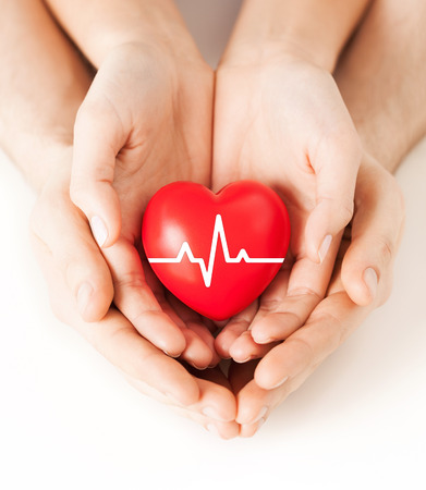 heart beat: health, medicine and charity concept - closeup of couple hands holding red heart with ecg line