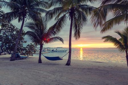 beach, summer and leisure concept - blue hammock on tropical beach photo