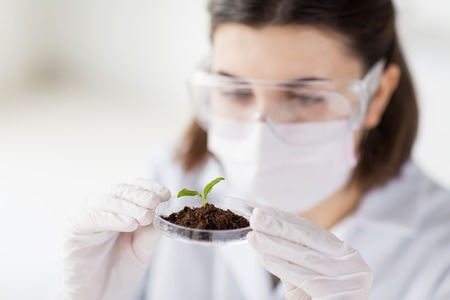organic plants: science, biology, ecology, research and people concept - close up of young female scientist wearing protective mask holding petri dish with plant and soil sample in bio laboratory