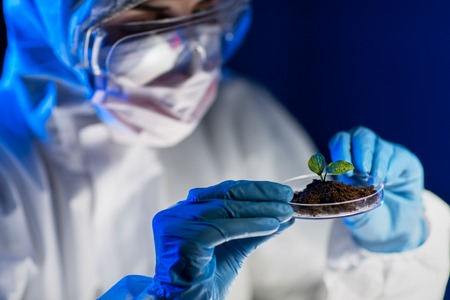 genetically modified: science, biology, ecology, research and people concept - close up of young female scientist holding petri dish with plant and soil sample in bio laboratory