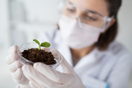 laboratory research: science, biology, ecology, research and people concept - close up of young female scientist wearing protective mask holding petri dish with plant and soil sample in bio laboratory