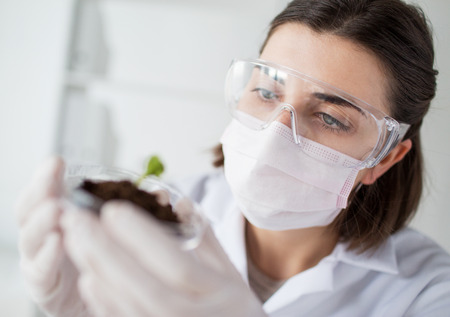 female scientist: close up of young female scientist wearing protective mask holding petri dish with plant and soil sample in bio laboratory