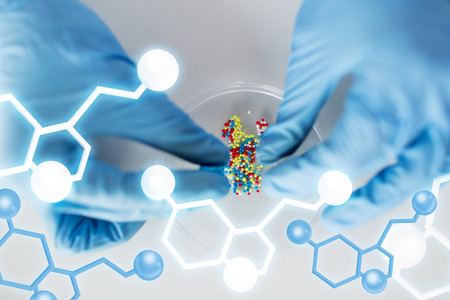 petri: science, chemistry, biology, medicine and people concept - close up of scientist or doctor hands holding and pouring pill content into petri dish in laboratory with molecular structure Stock Photo