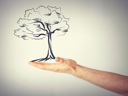 environment protection: environment, ecology and nature protection concept - man with small tree in his hand