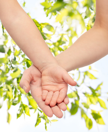 commercial tree care: people, charity, family, children and advertisement concept - close up of woman and little child hands holding empty palms over green tree leavers background