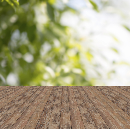 outoors: background and texture concept - wooden floor and green plants