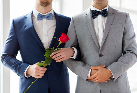 homosexual sex: people, homosexuality, same-sex marriage and love concept - close up of happy male gay couple with red rose flower holding hands on wedding