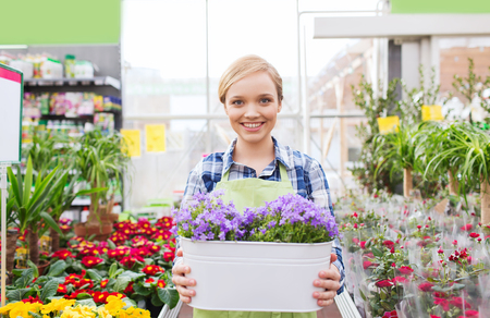people, gardening and profession concept - happy woman or gardener holding flowers in greenhouse photo