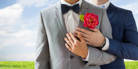 same sex: people, homosexuality, same-sex marriage and love concept - close up of happy married male gay couple in suits with buttonholes and bow-ties on wedding over blue sky and grass background Stock Photo