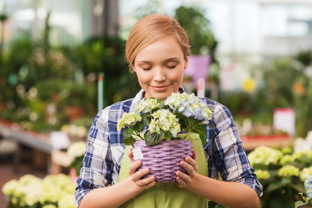 greenhouse and ecology: people, gardening and profession concept - happy woman or gardener smelling flowers in greenhouse