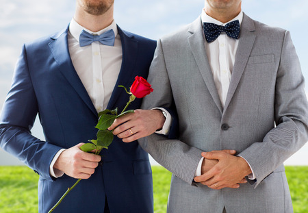 same sex: people, homosexuality, same-sex marriage and love concept - close up of happy male gay couple with red rose flower holding hands on wedding over blue sky and grass background