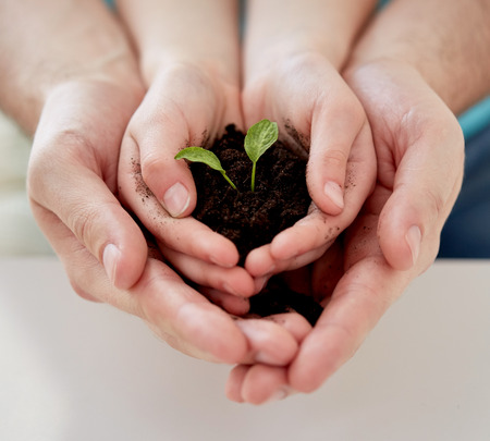 people, charity, family and ecology concept - close up of father and girl holding soil with green sprout in cupped hands at home Stockfoto