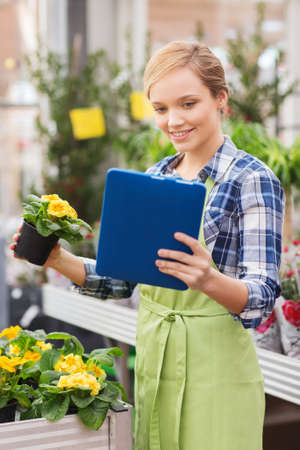 horticulture: people, gardening, technology and profession concept - happy woman or gardener with tablet pc computer and flowers in greenhouse