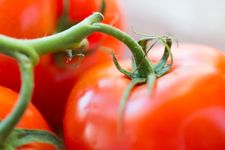 harvest: diet, vegetable food, harvest and objects concept - close up of ripe juicy red tomatoes
