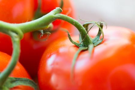 Ernährung, Gemüse Lebensmittel, Ernte und Objekte Konzept - Nahaufnahme von reifen saftigen roten Tomaten