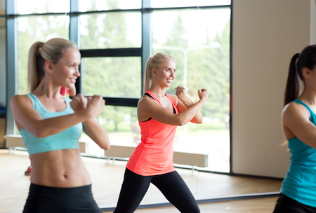women working out: fitness, sport, training, gym and lifestyle concept - group of women working out in gym