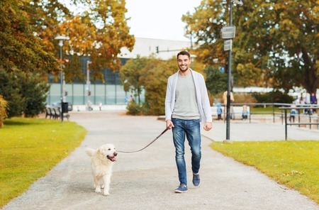 family, pet, domestic animal, season and people concept - happy man with labrador retriever dog walking in autumn city park