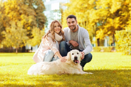 family, pet, domestic animal, season and people concept - happy couple with labrador retriever dog walking in autumn city park Фото со стока