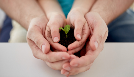 plant hand: people, charity, family and ecology concept - close up of father and girl holding soil with green sprout in cupped hands at home Stock Photo