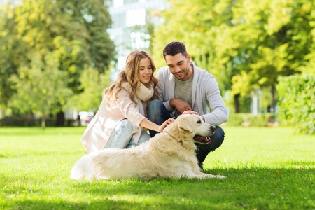 familia, mascotas, animales y personas concepto - feliz pareja con el perro labrador retriever caminando en el parque de la ciudad