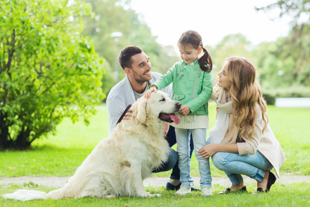 walk in: family, pet, domestic animal and people concept - happy family with labrador retriever dog on walk in summer park Stock Photo