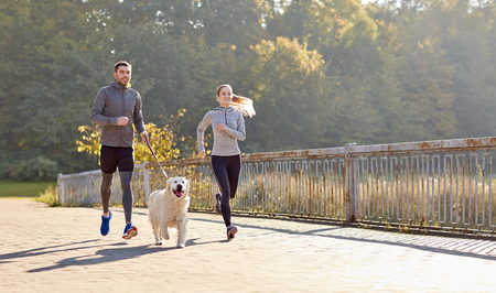 dog owner: fitness, sport, people and lifestyle concept - happy couple with dog running outdoors