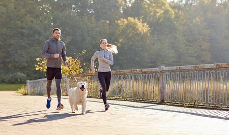 kondition, sport, människor och livsstilskoncept - lyckliga paret med hund kör utomhus Stockfoto