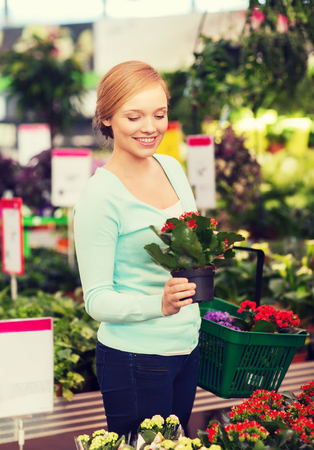 smiling woman in a greenhouse: happy woman with basket choosing and buying flowers in greenhouse