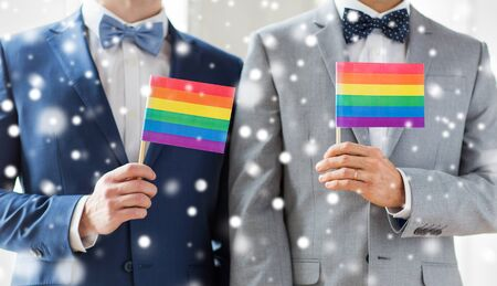 homosexual sex: close up of happy male gay couple in suits and bow-ties with wedding rings holding rainbow flags over snow effect