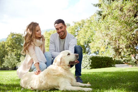 animal family: family, pet, animal and people concept - happy couple with labrador retriever dog walking in city park