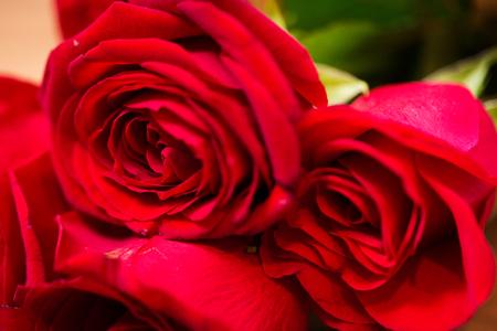 uprzejmości: love, date,  flowers, valentines day and holidays concept - close up of red roses bunch Zdjęcie Seryjne