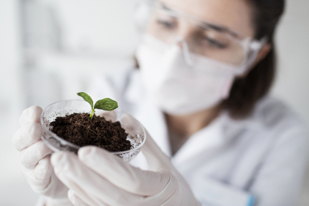 female scientist: science, biology, ecology, research and people concept - close up of young female scientist wearing protective mask holding petri dish with plant and soil sample in bio laboratory