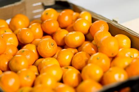 Verkoop, winkelen, vitamine C en gezond voedselconcept - rijpe mandarijnen bij supermarkt of boerderij
