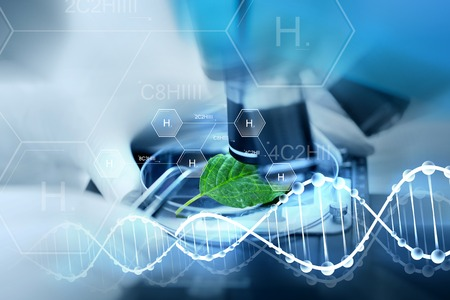 Wissenschaft, Chemie, Biologie und Menschen Konzept - Nahaufnahme Hand der Wissenschaftler mit Mikroskop und grünes Blatt Forschung im Labor über Wasserstoff chemische Formel Herstellung und DNA-Molekül-Struktur