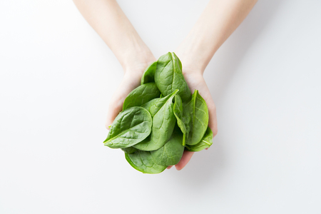 fresh spinach: healthy eating, dieting, vegetarian food and people concept - close up of woman hands holding spinach at home