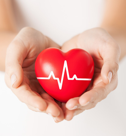 health, medicine and charity concept - closeup of female hands holding red heart with ecg line Stockfoto