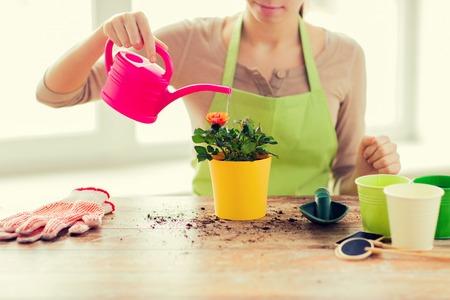 人们,从事园艺,花卉种植和行业概念 - 接近妇女或浇灌的玫瑰的妇女或浇灌的玫瑰与罐头在家