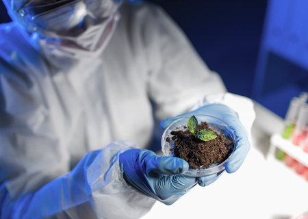 petri dish: science, biology, ecology, research and people concept - close up of young female scientist holding petri dish with plant and soil sample in bio laboratory