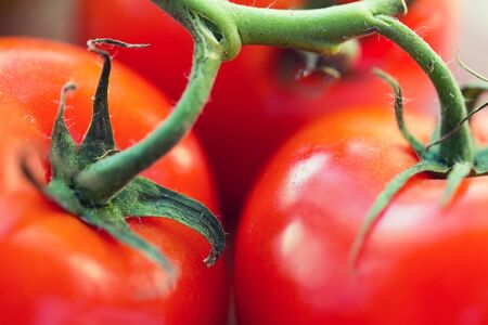 diet, vegetable food, harvest and objects concept - close up of ripe juicy red tomatoes