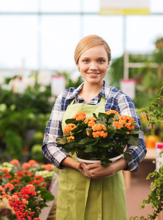 people, gardening and profession concept - happy woman or gardener holding flowers in greenhouse Stock Photo