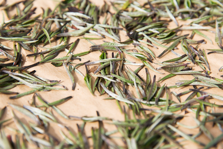 raw tea: agriculture, manufacture, industry and farming concept - close up of tea raw drying