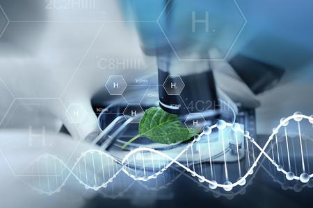 Wissenschaft, Chemie, Biologie und Leutekonzept - nah oben von der Wissenschaftlerhand mit dem Mikroskop und grünem Blatt, die Forschung im Labor über chemischer Formel der Wasserstoffformel und DNA-Molekülstruktur machen Standard-Bild