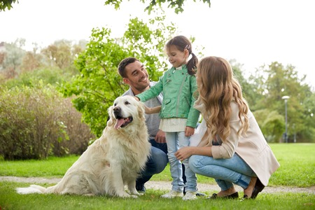 family, pet, domestic animal and people concept - happy family with labrador retriever dog on walk in park 版權商用圖片