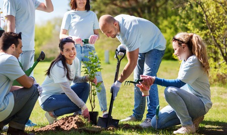 volunteering, charity, people and ecology concept - group of happy volunteers planting tree and digging hole with shovel in park 版權商用圖片