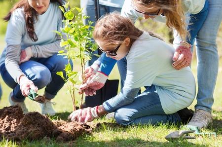 vrijwilligerswerk, liefdadigheid, mensen en ecologie concept - groep gelukkige vrijwilligers planten treel in park