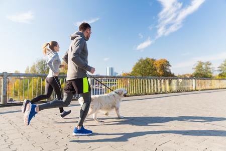 フィットネス、スポーツ、人、ジョギング コンセプト - 幸せなカップル屋外を走っている犬