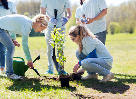 selfless: volunteering, charity, people and ecology concept - group of happy volunteers planting tree and digging hole with shovel in park Stock Photo