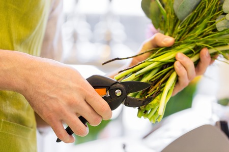 bunch of flowers: people, business, sale and floristry concept - close up of florist man making bunch and cropping stems by pruner at flower shop
