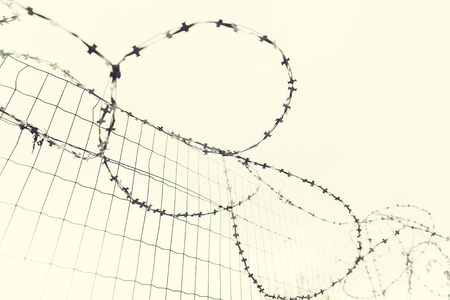 imprisonment: imprisonment, restriction concept - barb wire fence over gray sky