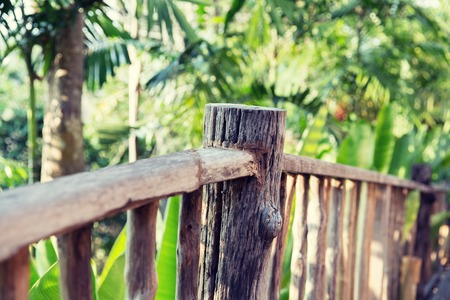 nature, travel, adventure and tourism concept - wooden fence at tropical woods or park Stock Photo